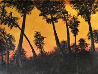 Træ kontrast solnedgang akryl
